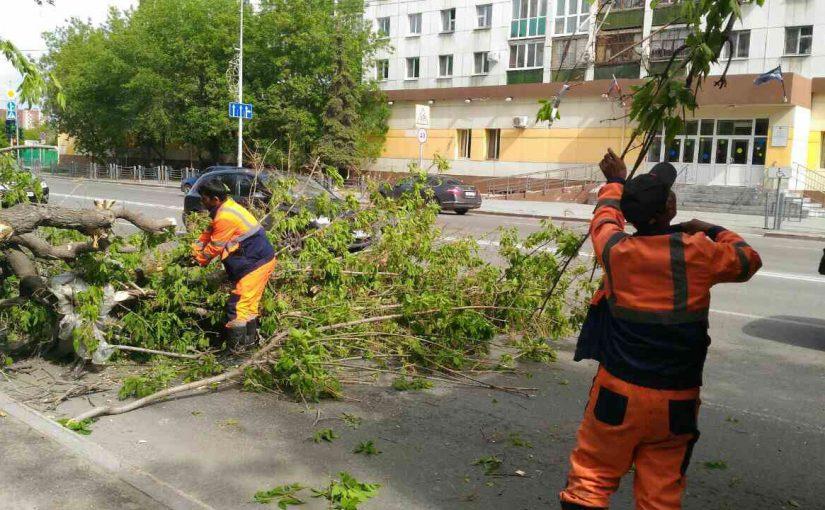 Жители Новороссийска оценили работу коммунальных служб