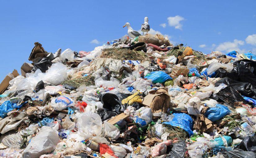Новороссийский мусор в 2023 году в Тамани превратят в электричество