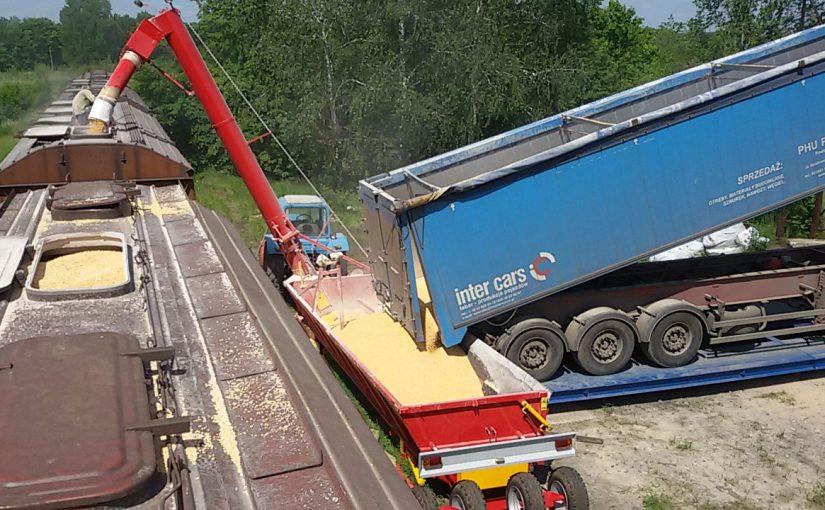 Новороссийск не справляется с зерновым потоком