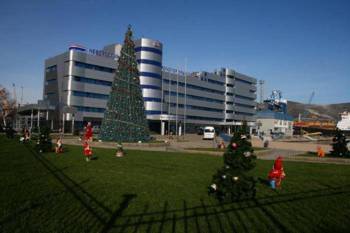 На «сувенирку» к Новому году НМТП потратит 2,3 миллиона рублей