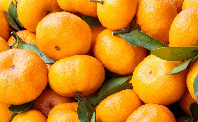 В новороссийских магазинах мандарины дешевле, чем на рынке