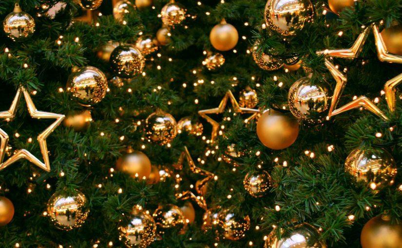 Под Новый год новороссийцы прятали елки от соседей