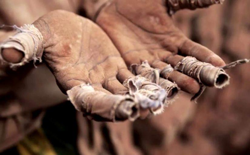 Мужчина хотел заработать на новороссийских виноградниках, а попал в дагестанское рабство