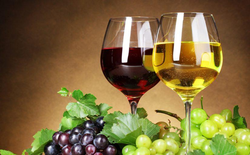 В Новороссийске можно будет выпить и закусить по-древнегречески
