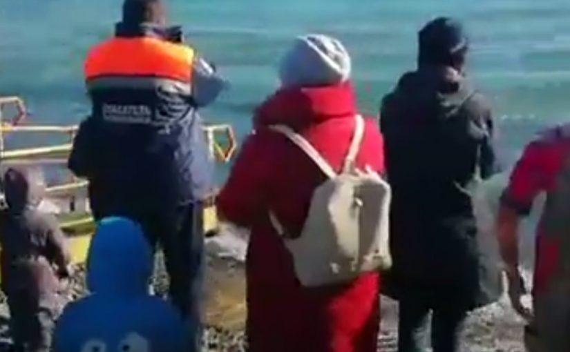 В Новороссийске участники Крещенского заплыва не побоялись норд-оста (видео)