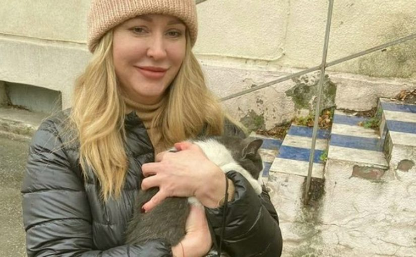 Что-то творится с котами в Новороссийске