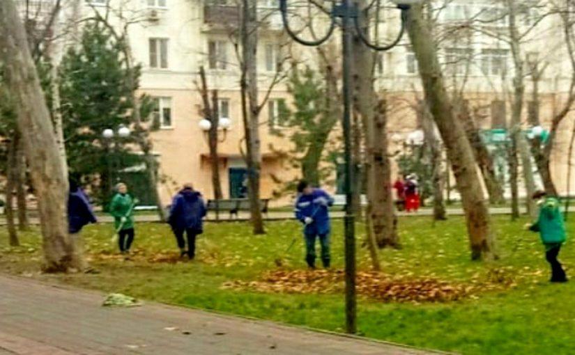 Озеленители Новороссийска готовятся к «Бескозырке» — косят траву