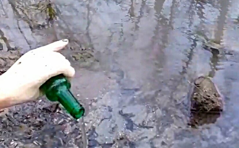 В Пионерской роще Новороссийска появился фонтан. Малюсенький (видео)