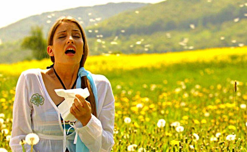 От аллергии предлагают спасаться в Новороссийске