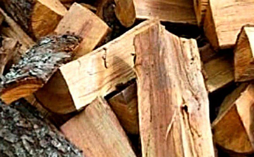 Новороссийцев просят помочь дровами маме с особым ребенком