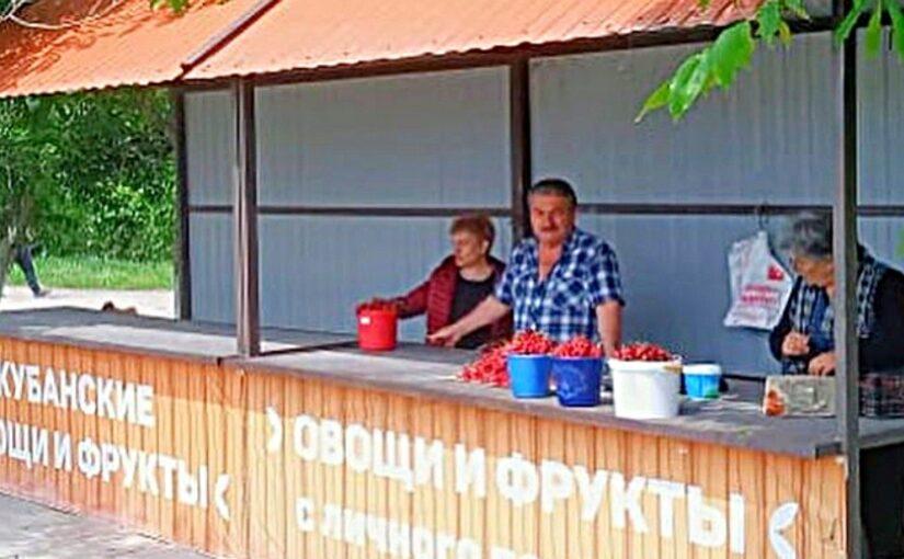 В пригородах Новороссийск лучше торговать не на обочине, а в социальных рядах